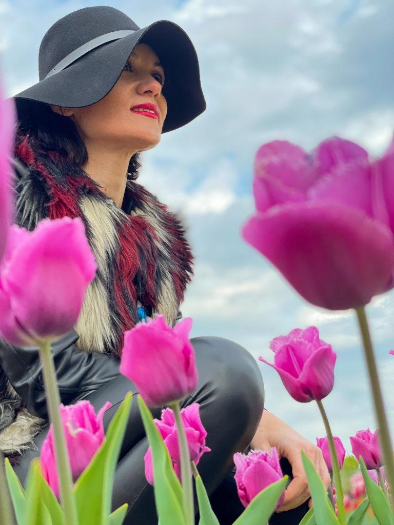 tra i miei tulipani preferiti nel campo di Bologna al quartiere navile