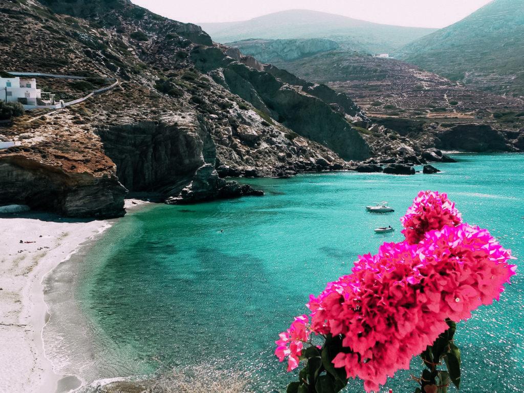 La splendida buganvillea tipica delle isole greche rende il paesaggio di Folegandros ancora più suggestivo
