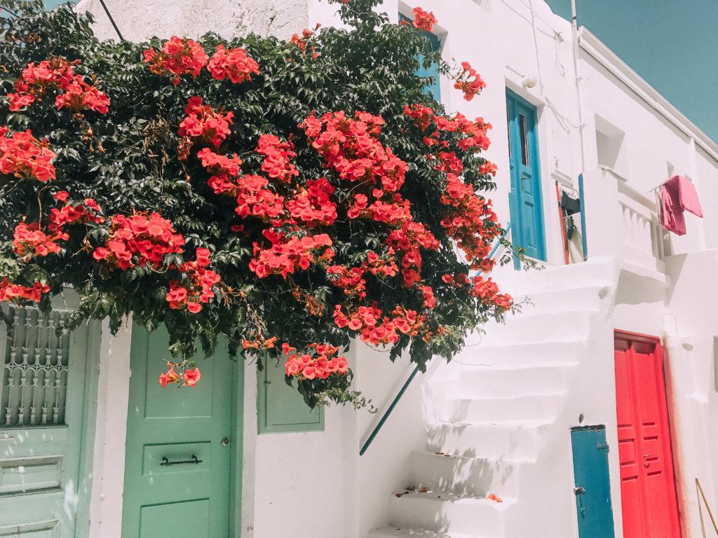 Mykonos è tra le isole più famose della Grecia, amata dai giovanissimi ma anche da chi vuole riscoprire le sue splendide spiagge