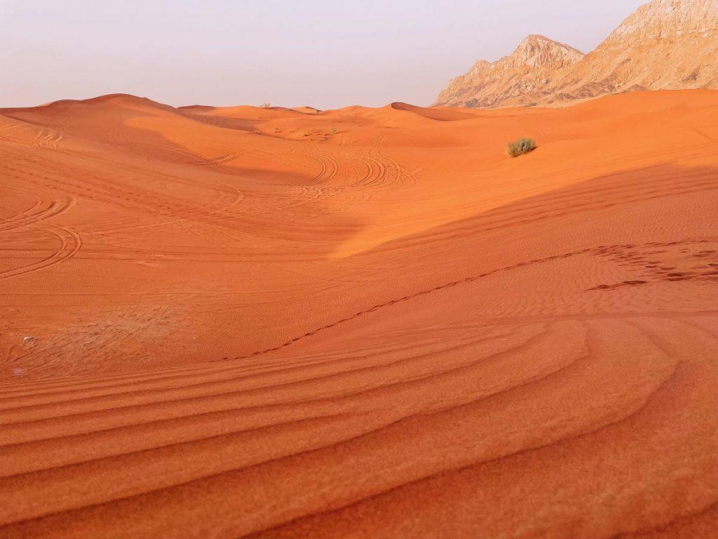 La sabbia del deserto di Sharja è rossastra e non chiara come quella di Dubai