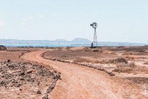 il terreno dell'isola di Lobos è quasi lunare e semideserto